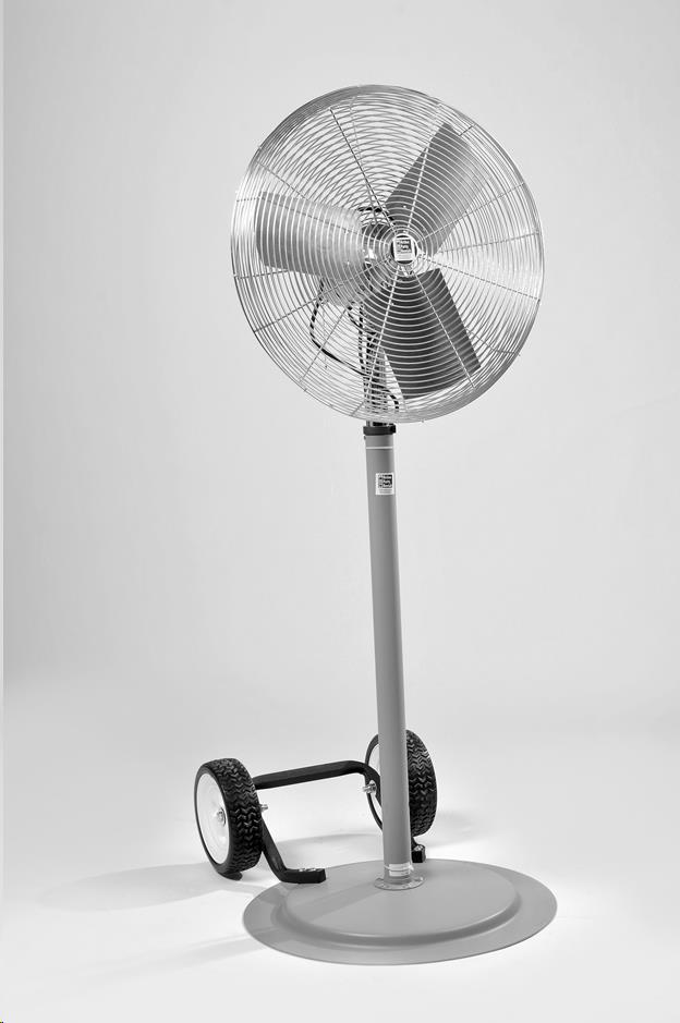 Where to find Pedestal Fan in Allentown