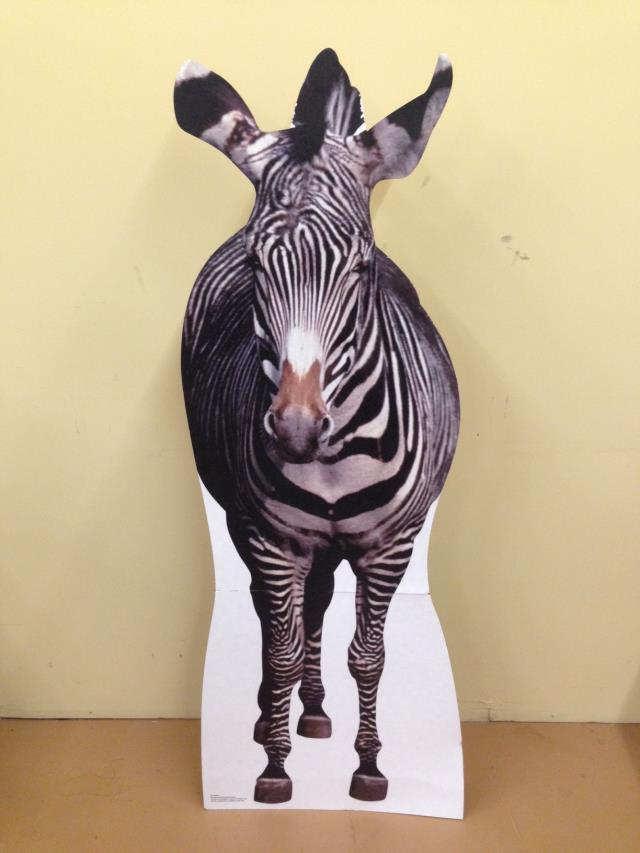 Where to find Safari Standup Zebra in Allentown
