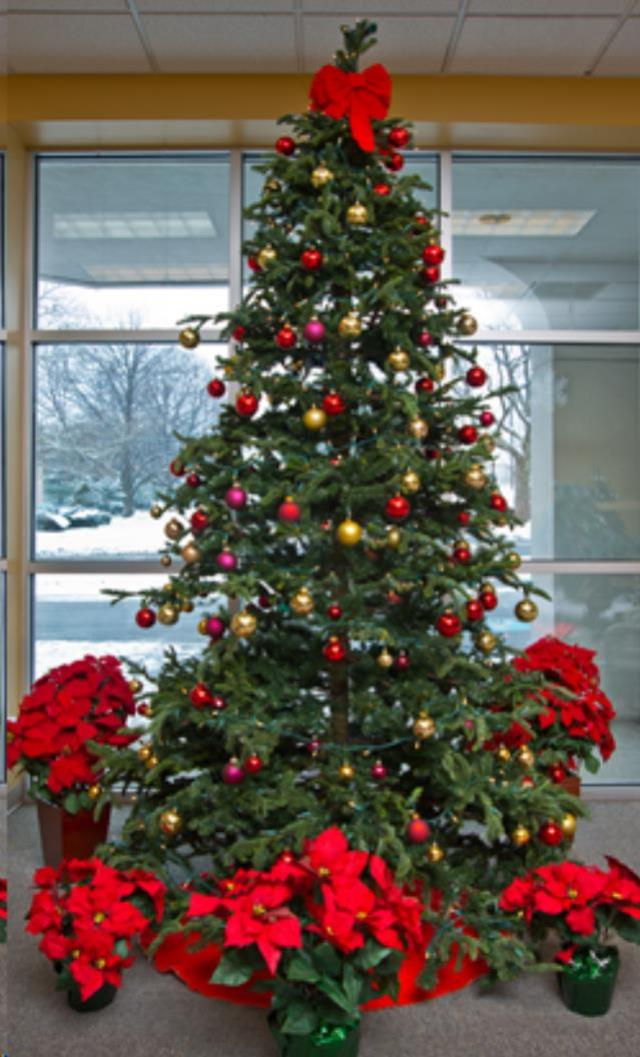 Where to find zChristmas Tree w  Decor 12 in Allentown