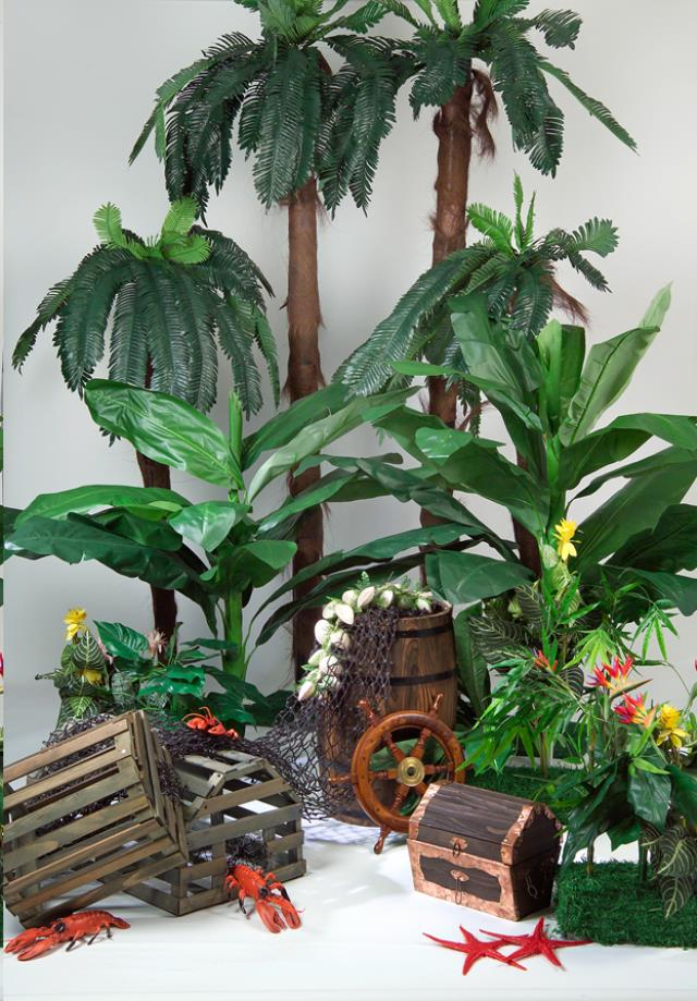 Where to find Tropical Trees and Treasure Theme in Allentown