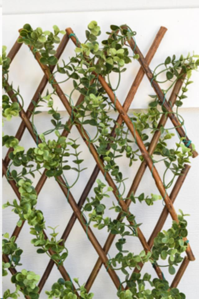 Where to find Garden Screen Boxwood 39  x 78 in Allentown