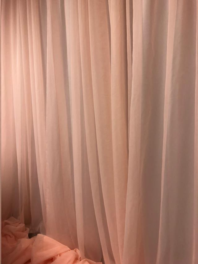 Where to find 20 H x 10 W Sheer Panels Blush in Allentown